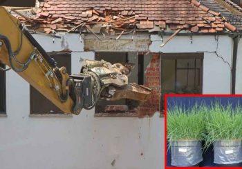 Sobras da construção civil podem ser recicladas e usadas no cultivo de plantas